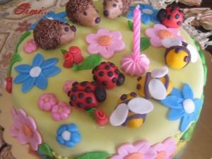 Cake Design - Introduzione