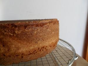 Basi per torte decorate: La Torta alla Panna