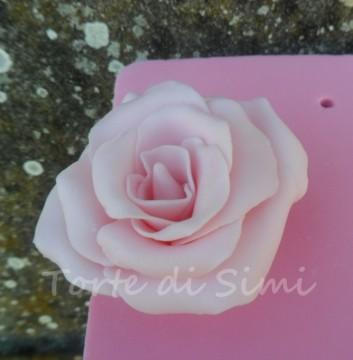 Presentazione rosa in pasta di zucchero