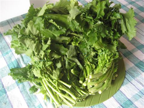 Mondare i friarielli togliendo i gambi più duri e le foglie più rovinate.