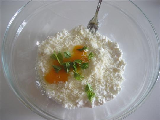 In una ciotola mescolare la ricotta con il parmigiano,l'uovo,il pizzico di sale e qualche foglia di basilico
