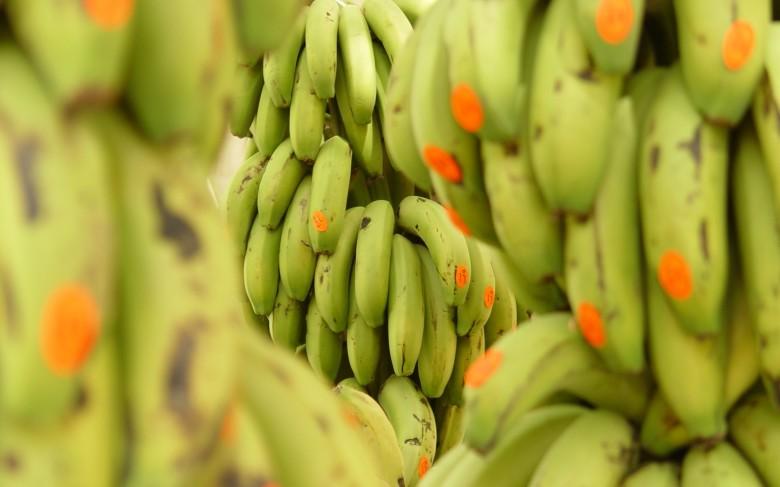 calorie banana